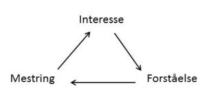 forståelse, mestring, interesse